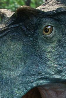 Swordlord albertosaurus dino d 53025b2c bg4l