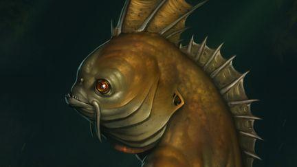 Bazilioslep fish native 1 d3fb464c qtlk