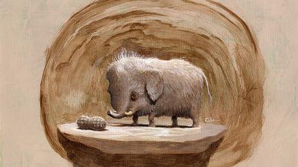 Micro Mammoth