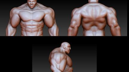 Brute Model (WIP)