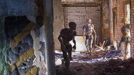 fallout photo manipulations