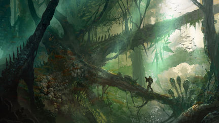 Jungle Nook