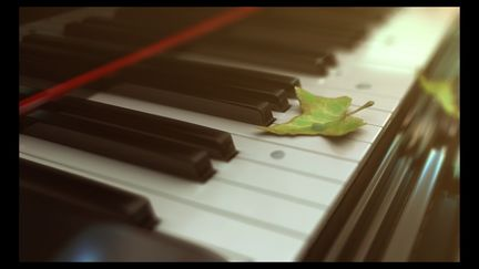 Piano with leaf