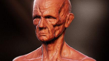 Reddish Head