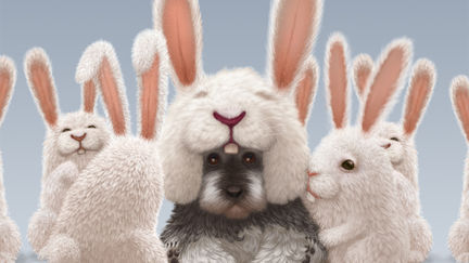 Rabbit dog