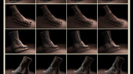 Anatomy of the foot (incl .ztl file)