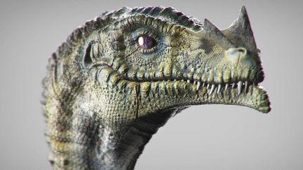 Sculpting Anatomy // Dragon (Wyvern) Concept