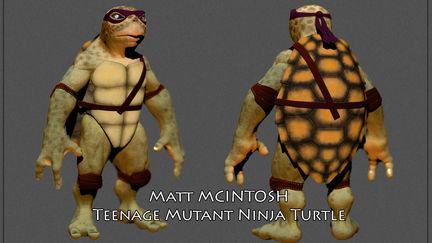 Loggerhead Teenage Mutant Ninja Turtle