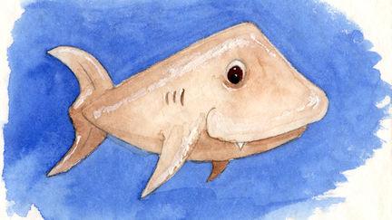 Dwarf Shark