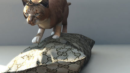 GUCCI CAT