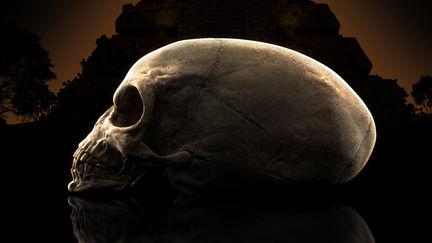 Alien Skull: Profile