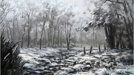 Snowy-3