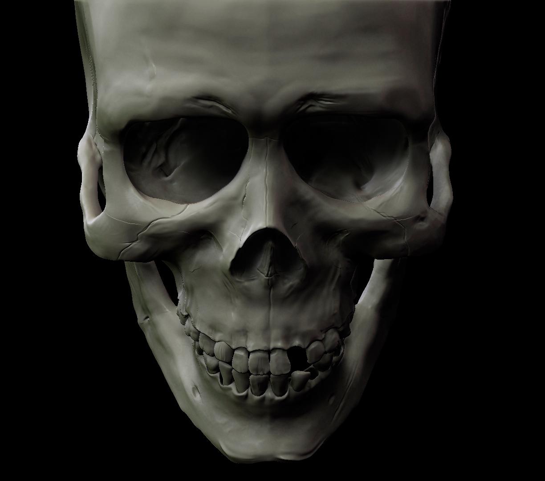 Antonlegonkov skull 1 f25a387d 8ae1