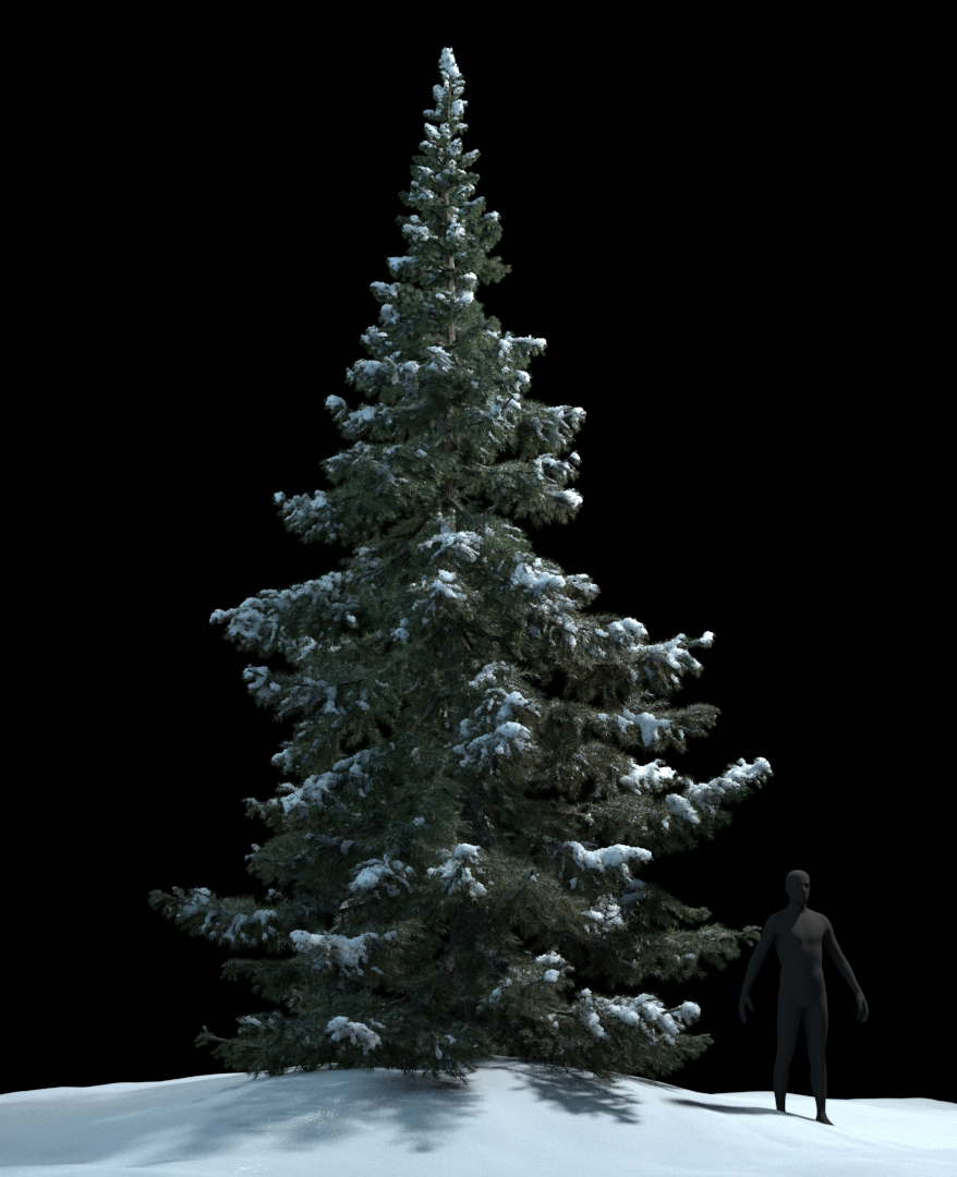Atrujo snow tree test 1 ce00b202 pu6u