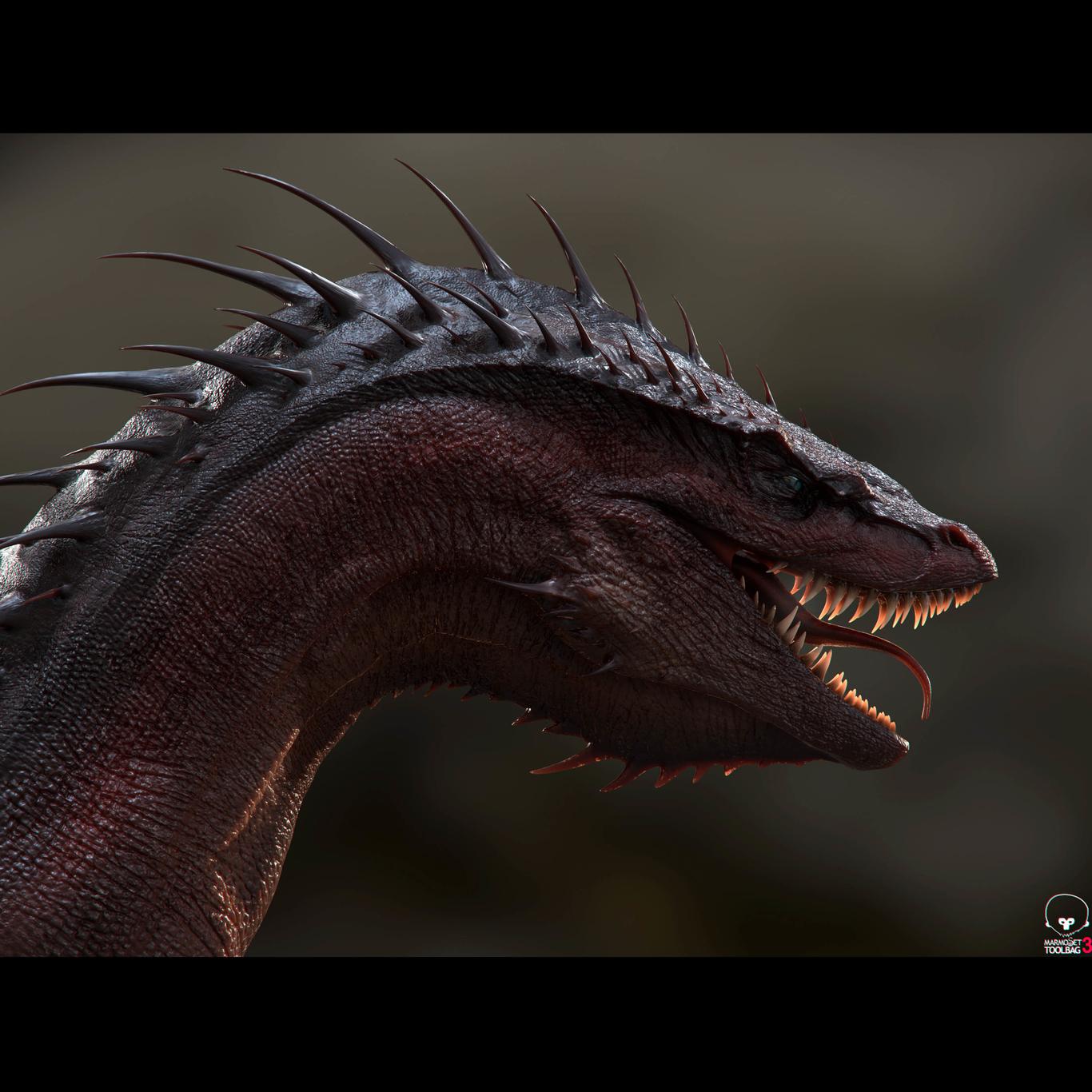 Cgsoufiane dragon 1 f9471d0a lwj7