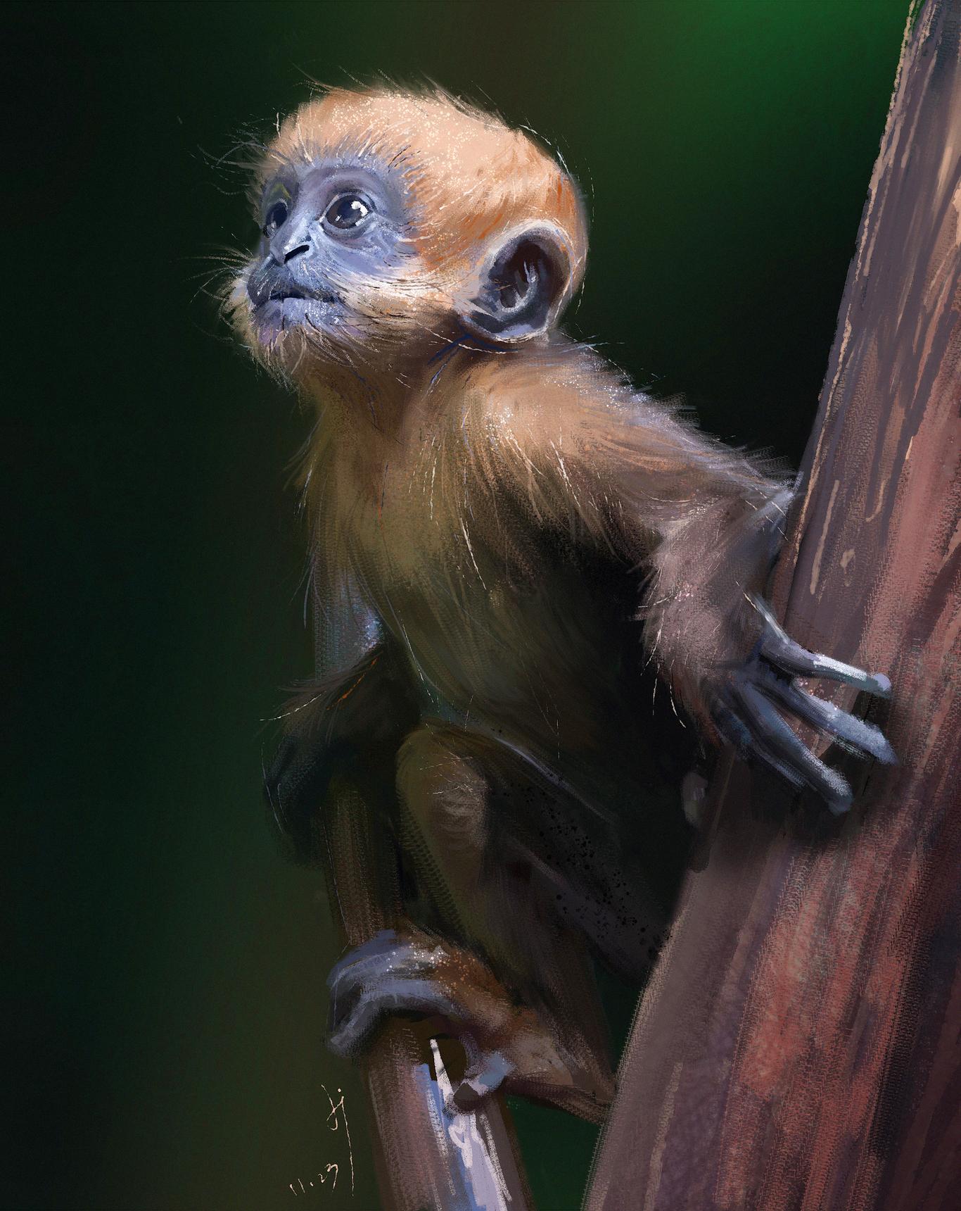 Fangxinyu monkey monkey 1 eae68d4b 8h4e