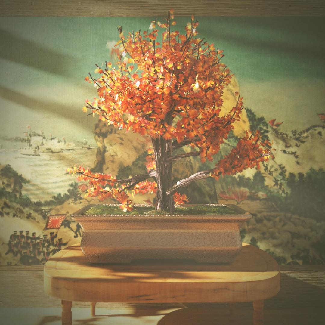 Guipah bonsai 1 d4c96c40 aups