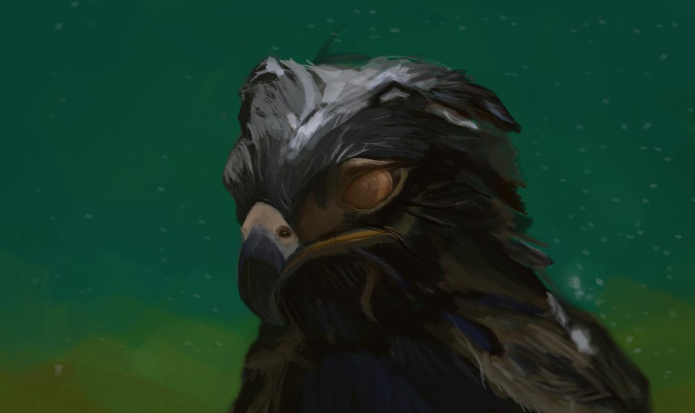 Mgholland blind bird 1 48e31ae5 ynmb
