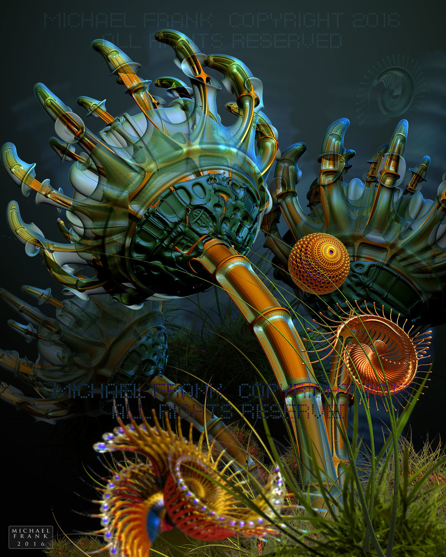 Michaelfrank600 anemone 1 0b8da82f hdq7