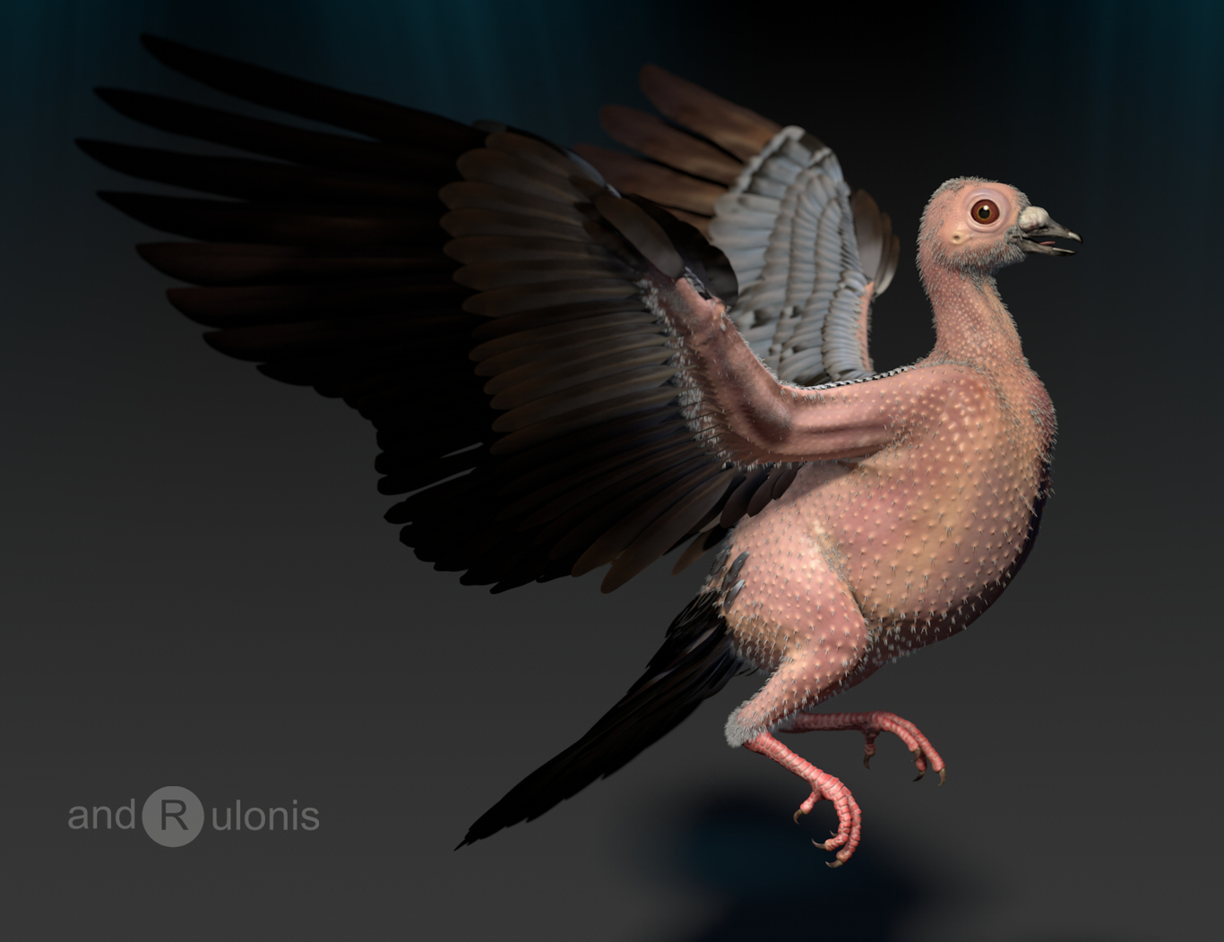 Rulonis feral pigeon 1 d4f6d861 9jus