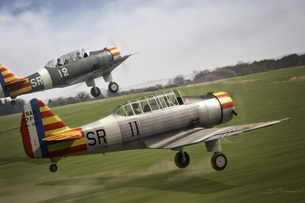 Skyraider3d vichy fledglings 1 d3e3a9a6 j0ub