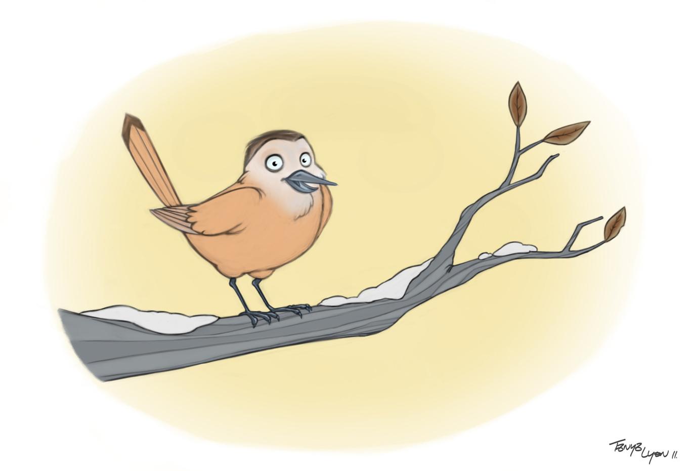 Tanya winter birdy 1 953c4c6a msx5
